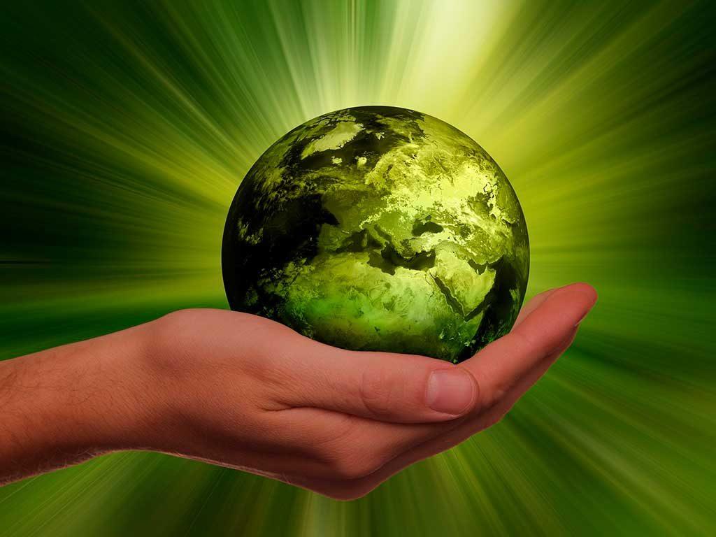 mano terra green