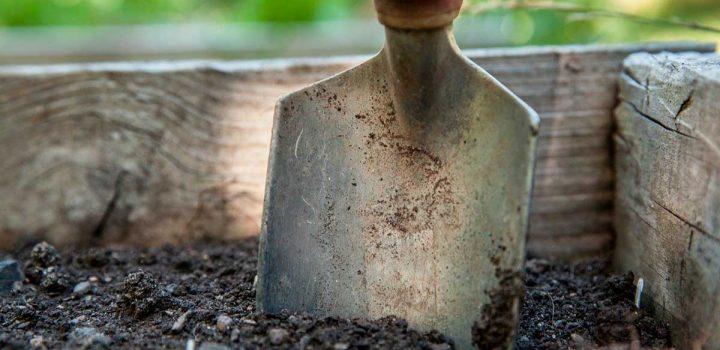 Giardino o terrazzo – è ora di concimare