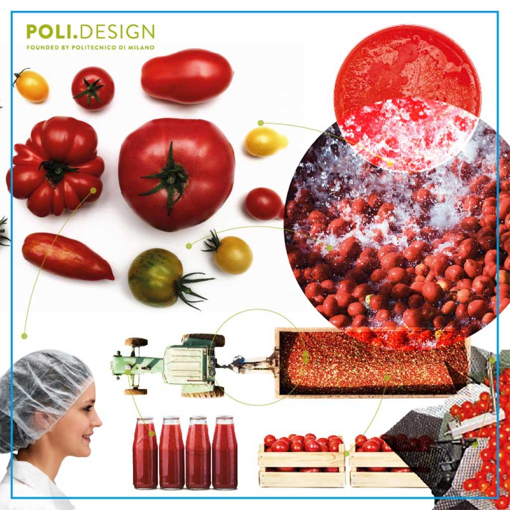 poli design master food