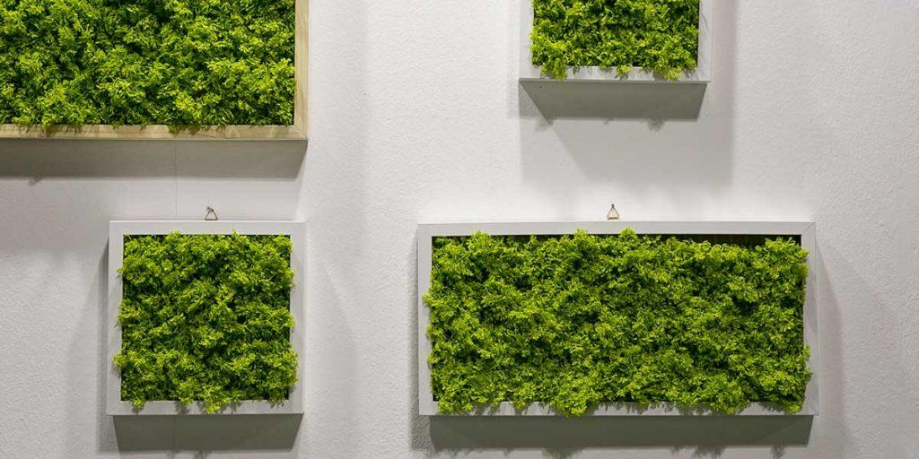 quadri parete verde dentro