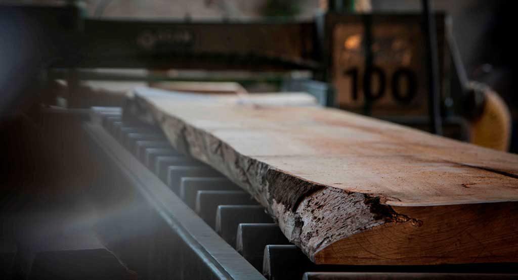 taglio tavole tronco
