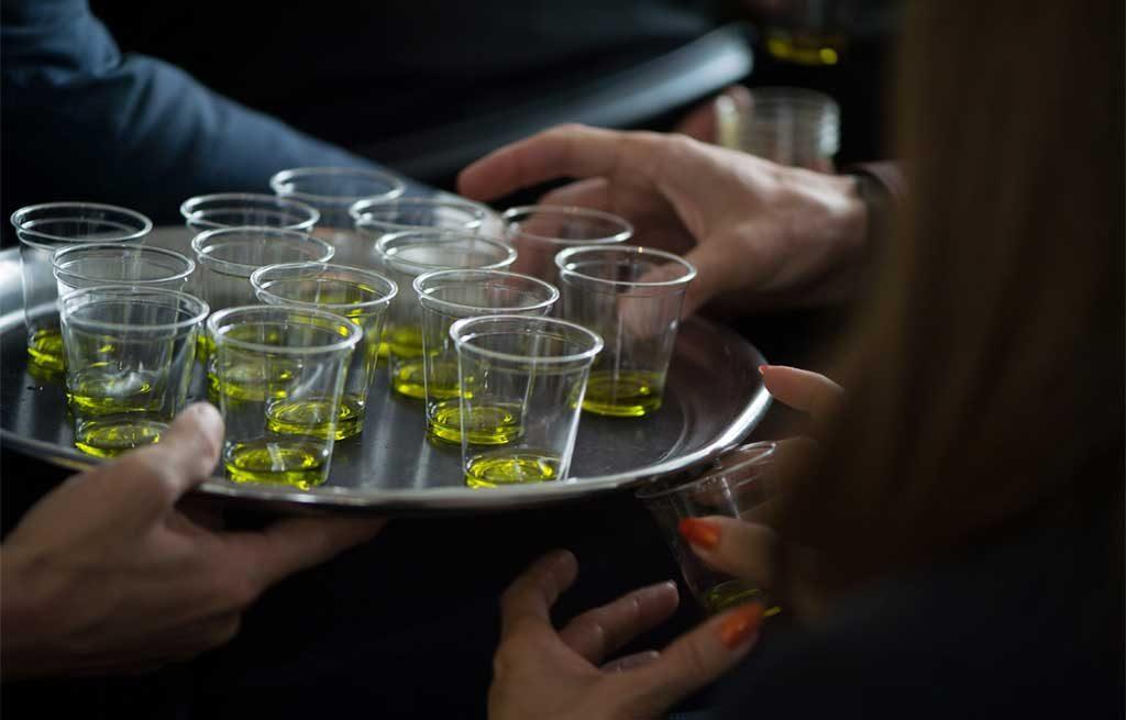 assaggio olio oliva