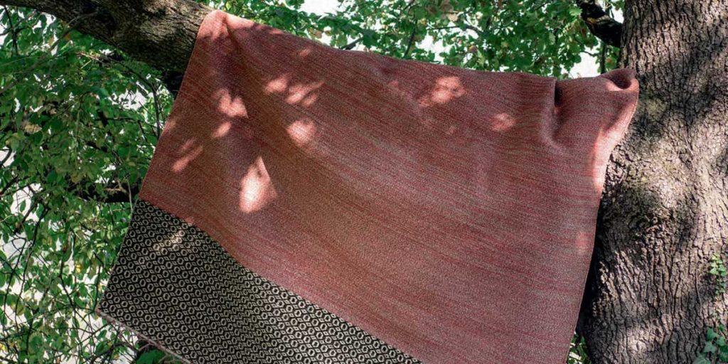 tappeto ramo albero esterno