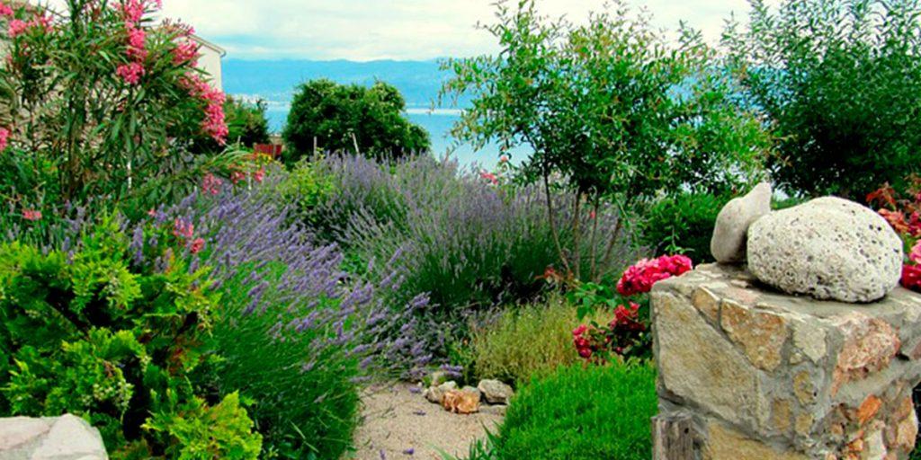 piante riva mare lago
