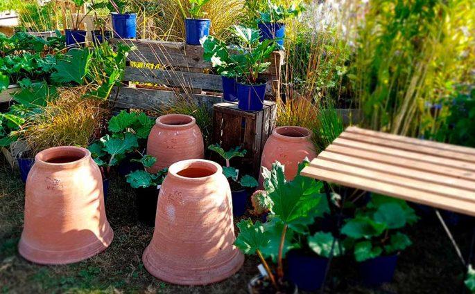 vasi giardino terracotta