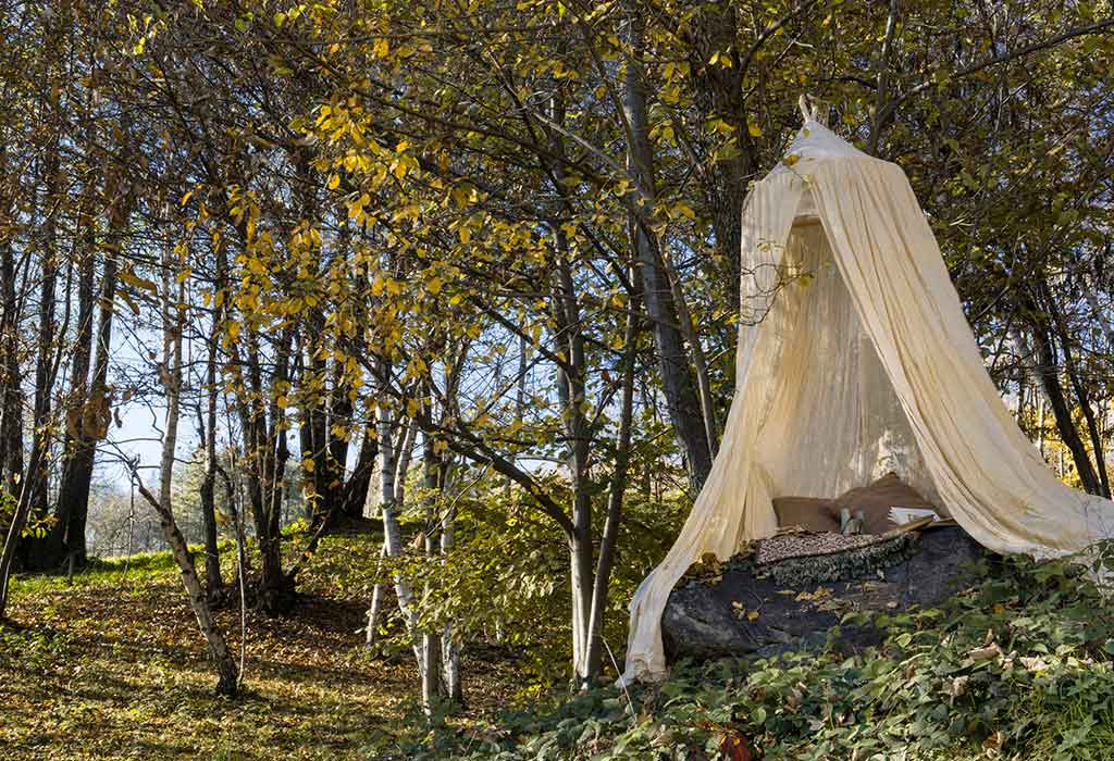 esterno tenda albero