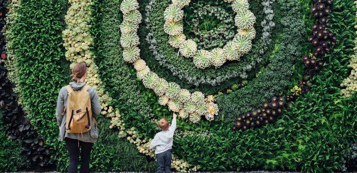 Quadri e pareti verdi in casa per un'aria di qualità
