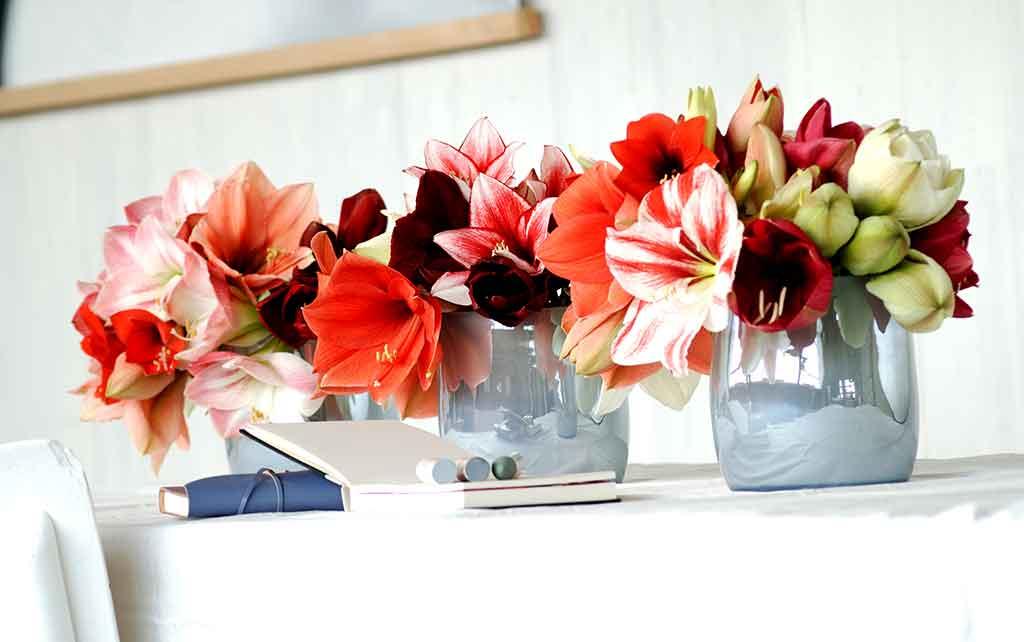 vasi fiori casa