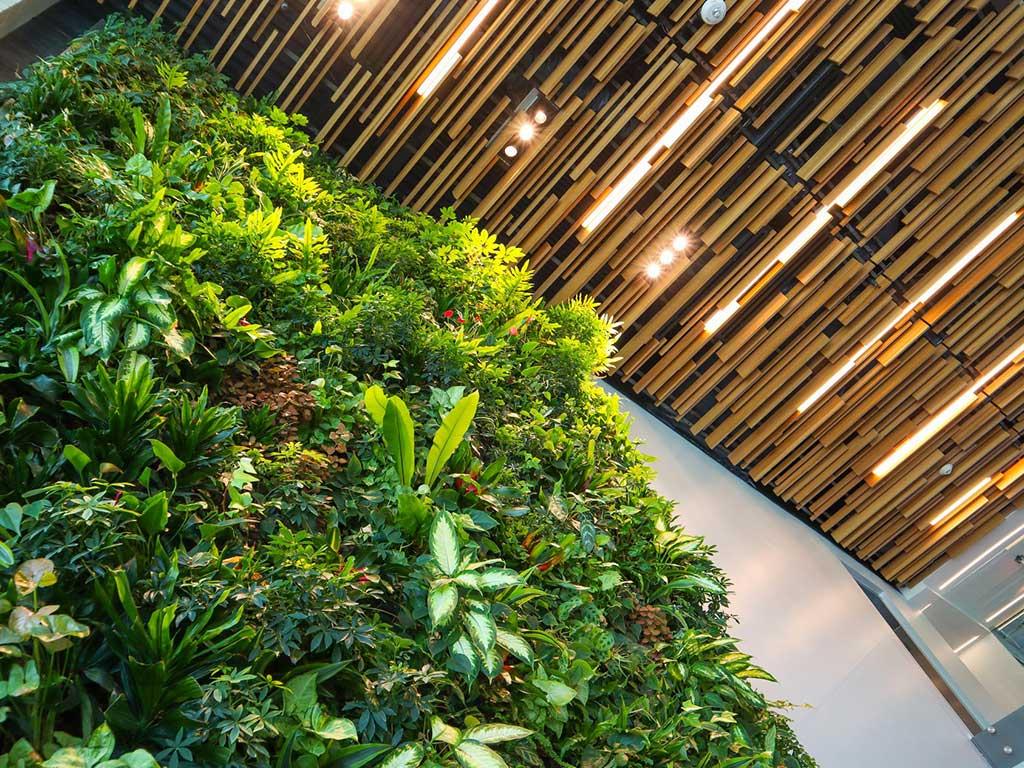 verde indoor inquinamento