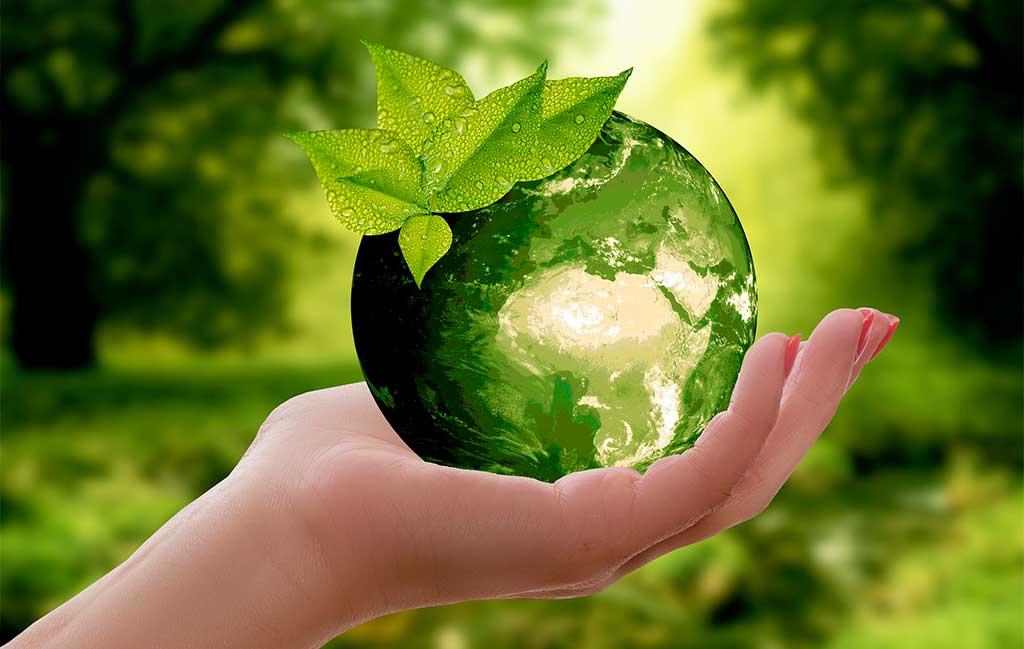 pianeta verde mano