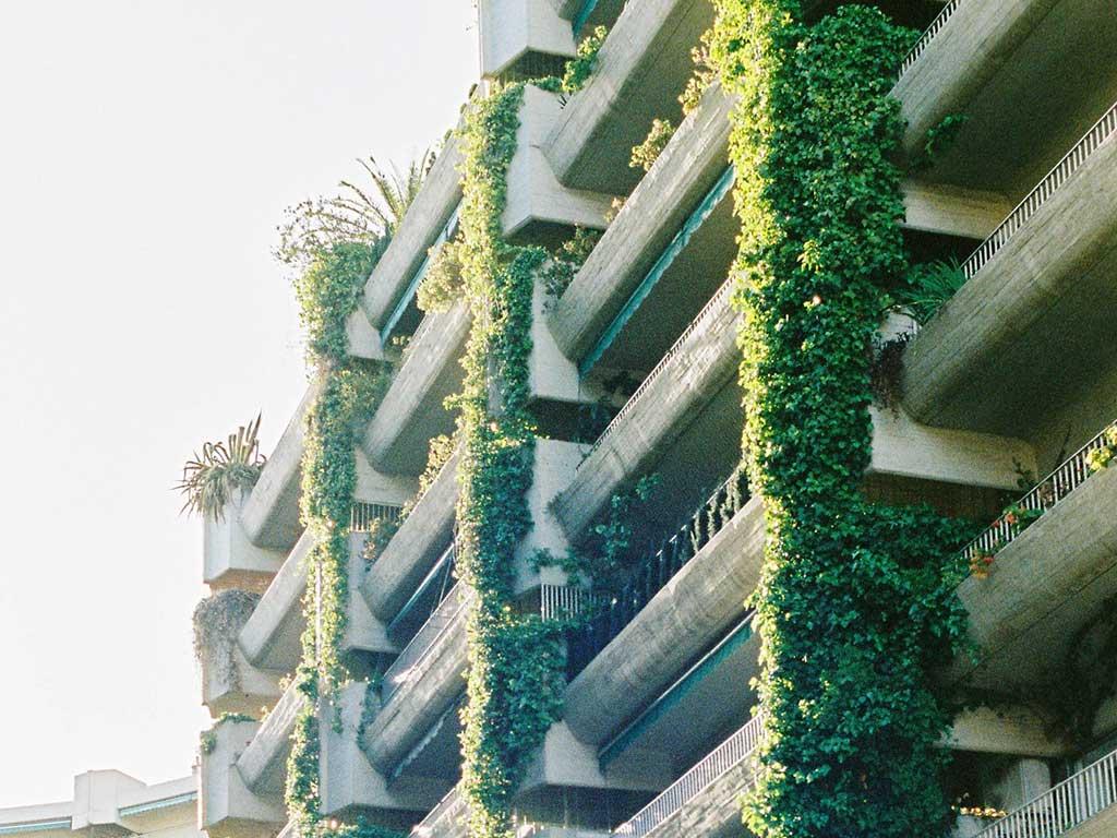 facciata palazzo piante