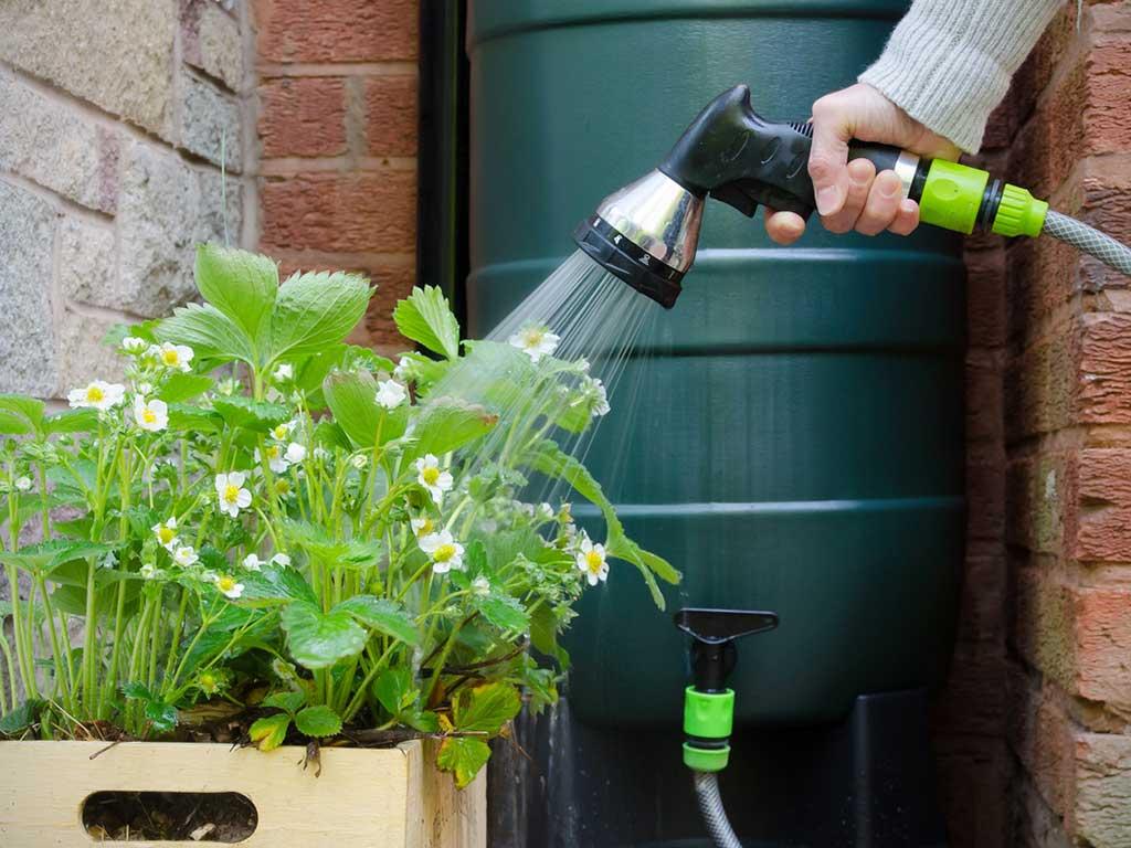irrigazione piante giardino