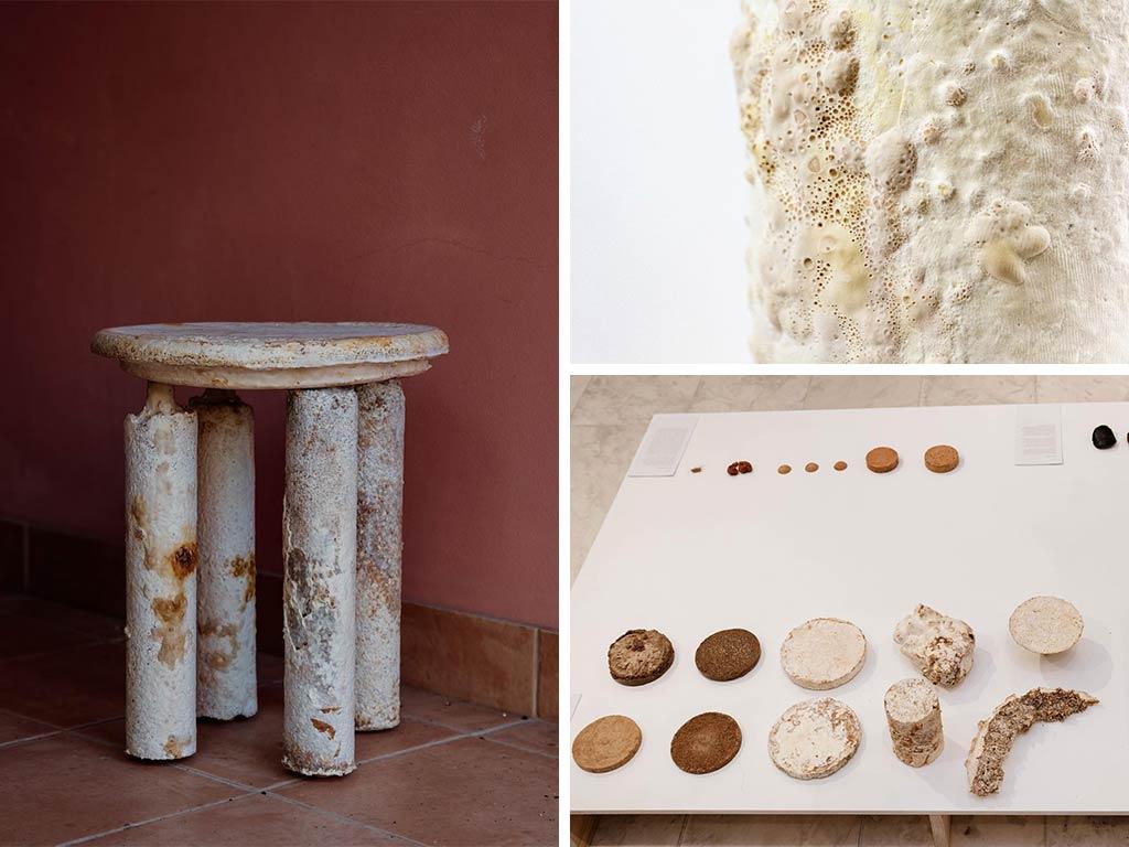 sgabello composto da funghi e dettagli struttura