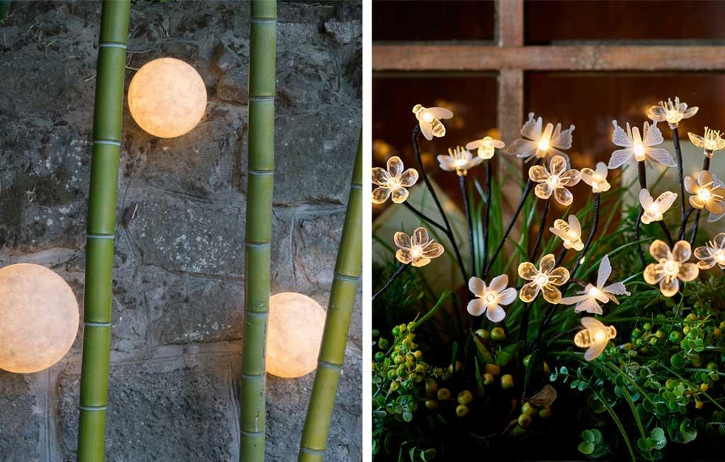 punti luce fiori insetti