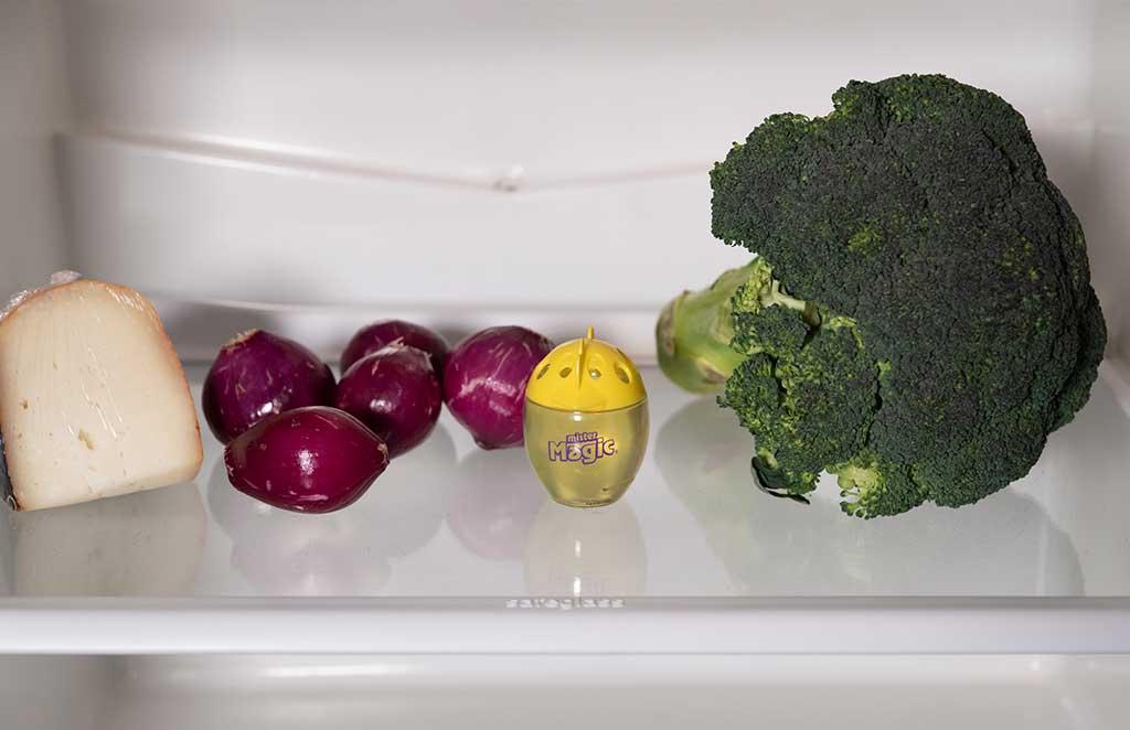 assorbiodori frigorifero