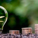 lampadina pianta dentro monete