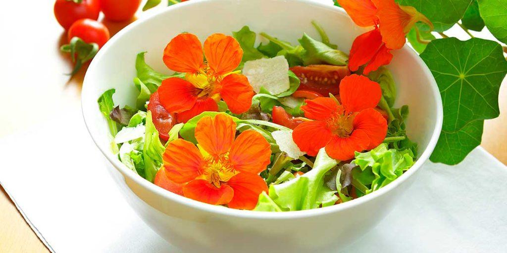 fiori rossi insalata