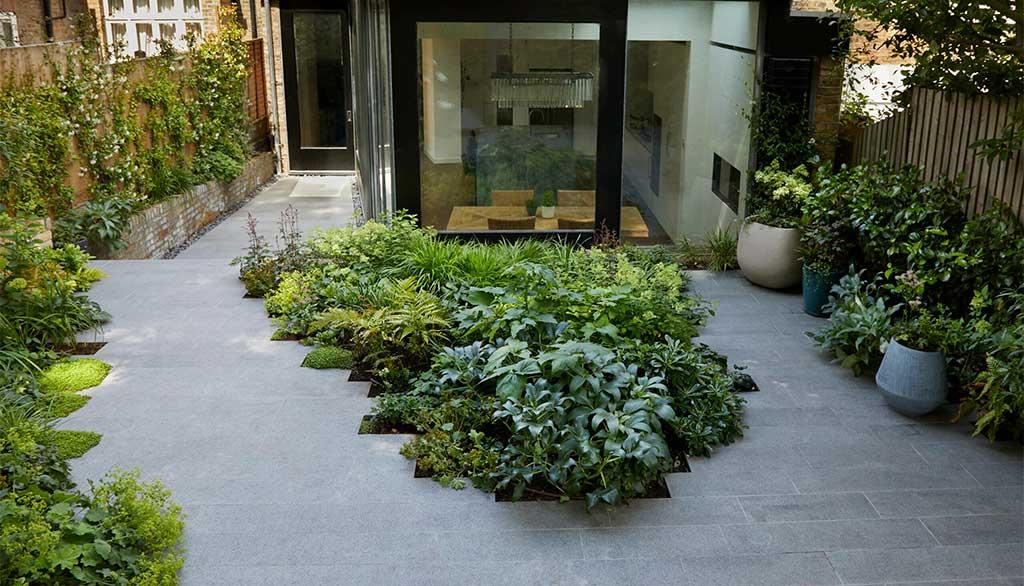 piante terra terrazzo